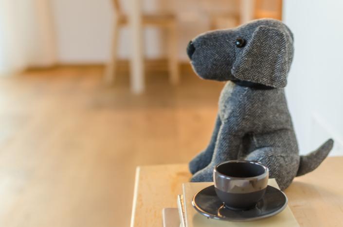 caffè con cane pavimento in legno atmosfera home staging